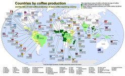 world_countries_coffee-production-small