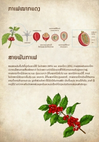 Lao coffee notebook